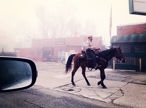 Mounted police patrolling our hood this foggy morning.