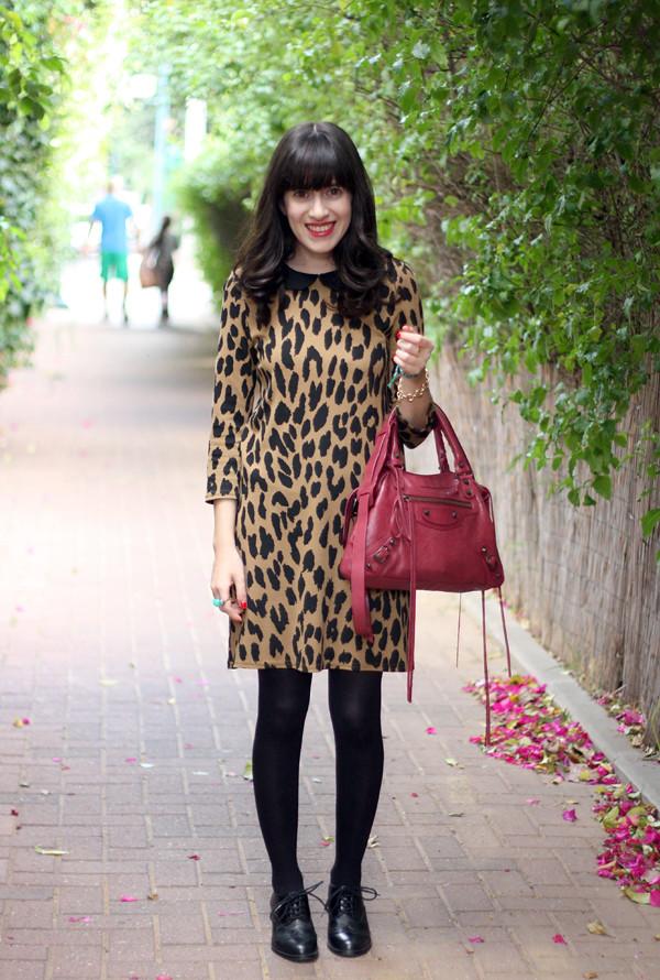 leopard dress, balenciaga town bag, oxford shoes, בלוג אופנה, תיק בלנסיאגה, אפונה בלוג אופנה, שמלה מנומרת