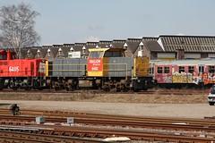 RN 6481