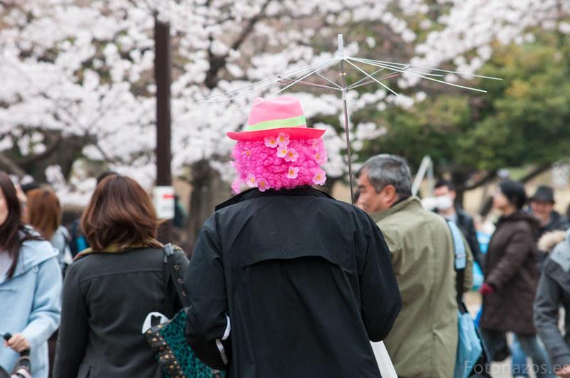 El Parque Yoyogi de Tokio y sus cerezos en flor (Hanami)