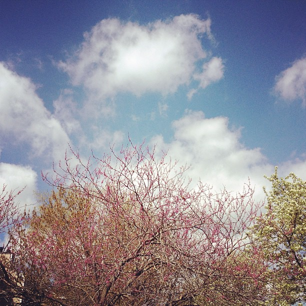 It's a beautiful day for moving! #spring #pretty #sky #skylove