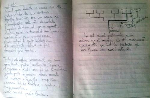 istoria_blogului1_81