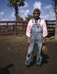 Seminole cattleman Charlie Micco: Brighton Reservation, Florida