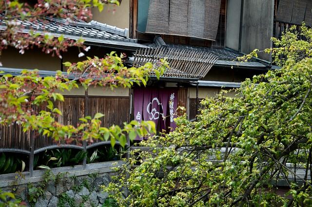 kyoto134-156