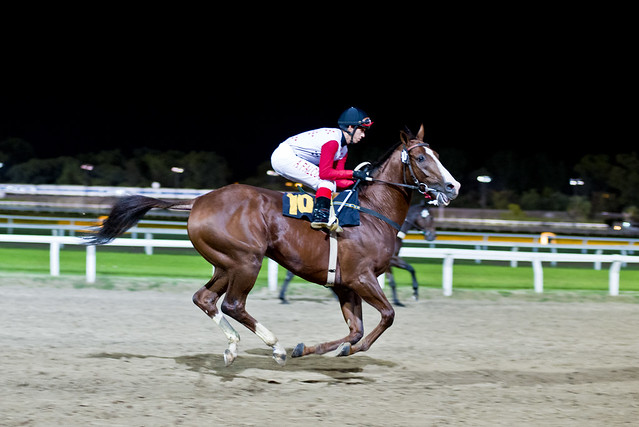 Hippodromo (Photo: Simon Guerra)