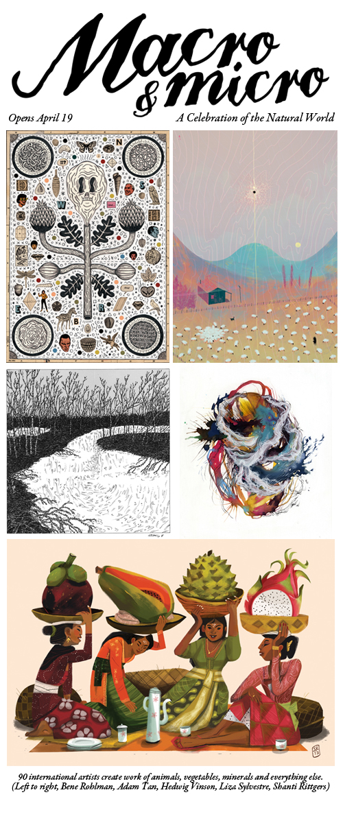 Preview Images for Light Grey Art Lab's Macro & Micro Show!