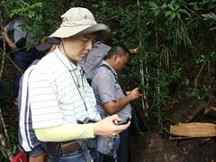 大武林班地進行查緝盜伐作業。(圖片來源:林務局)