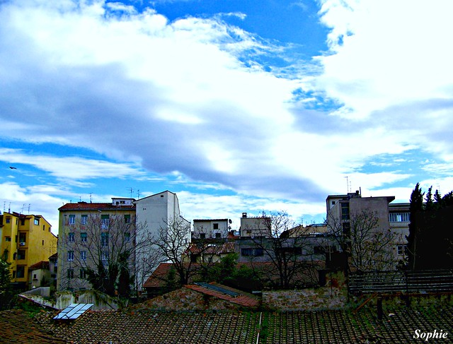 Florence Sky
