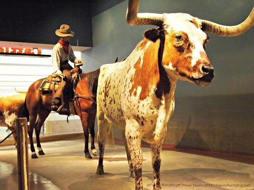 Cattle Raisers Museum in Fort Worth Museum of Science and History