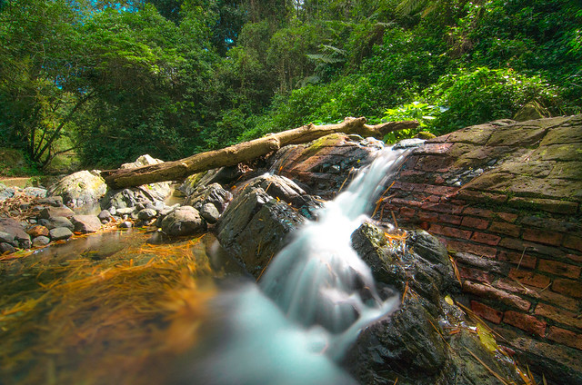 Maricao Stream