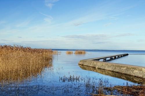 bridge blue sky lake ice reed nature cane landscape spring photomix bessula coth5 besteverdigitalphotography