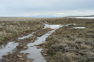 Dry Plateau?