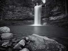 Cloudland Canyon-April 2013