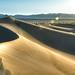 Mesquite Dunes_171-Mesquite Dunes