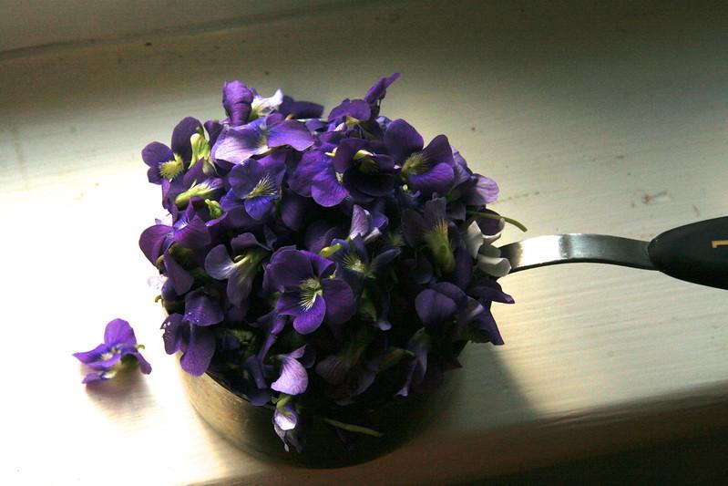 spring traditions...violet jam