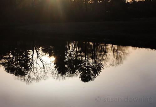 Stillness 227/365