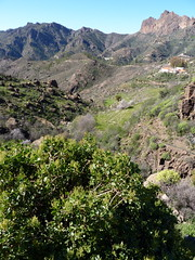 Gran Canaria - Ayacata in the Winter