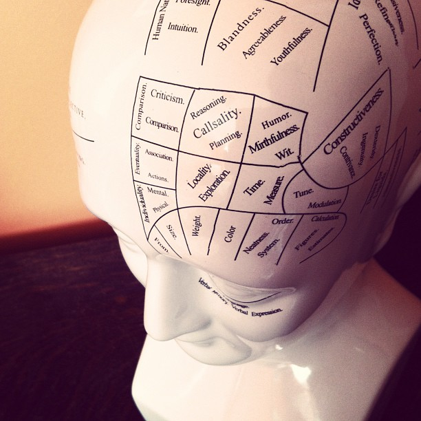 "#fmsphotoaday @fatmumslim ""on your mind"" phrenology head."