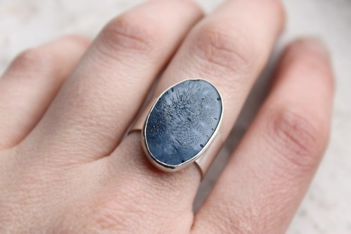 Oceans of the Past Ring