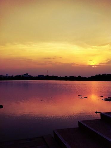 uploaded:by=flickrmobile flickriosapp:filter=iguana iguanafilter มหาวิทยาลัยขอนแก่นkhonkaenuniversity