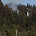 2013-04-27 Roaring Camp Wildland Fire