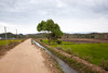 Tree, Irrigation, & Dirt Road outside of Kon K'Ri near Kon Tum - Vietnam