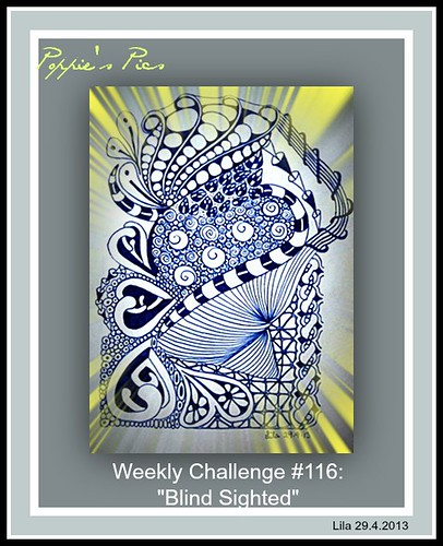 Weekly Challenge #116a Blind Sighted by Poppie_60