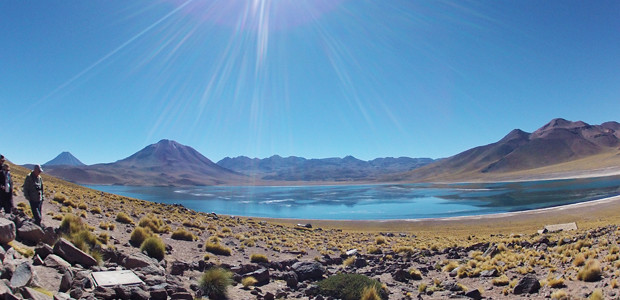 Atacama - Lagunas Altiplanicas