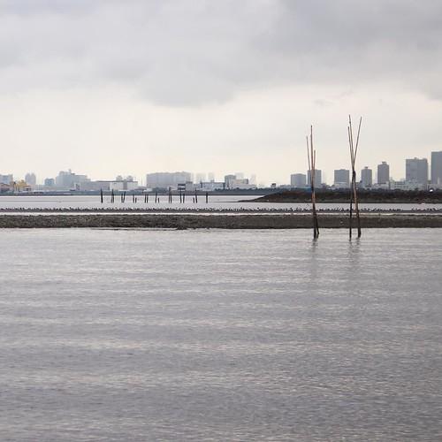 大潮の干潮時なので、いつもは見えない干潟が顔を出してる。あまりにギリギリすぎてスクリューをこすったので、この後チルト走行で脱出。