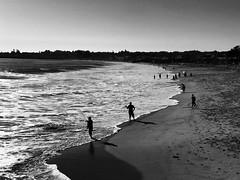 Santa Cruz afternoon