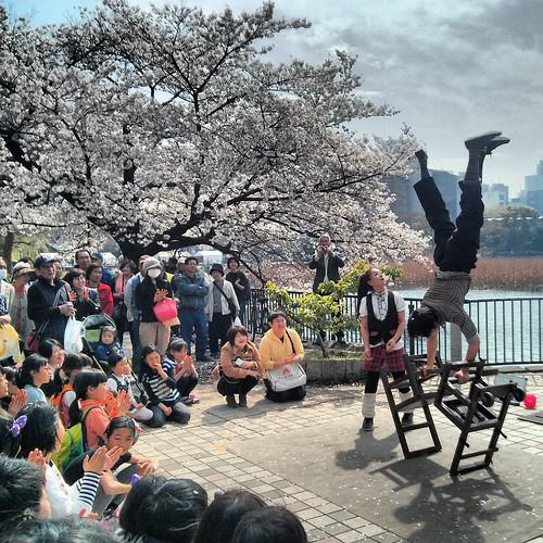 Ueno Park Acrobats