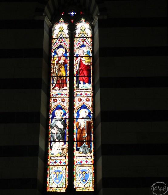 Siena Basilica di San Francesco 096