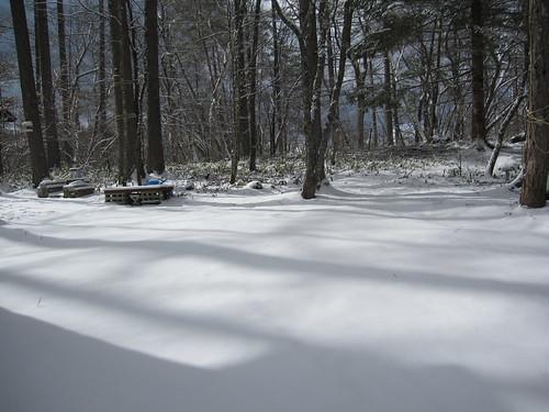 春の雪(庭) 2013.4.11 by Poran111