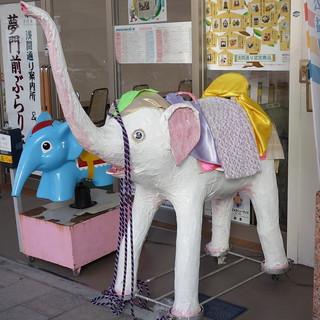 浅間通り、タイの白象。