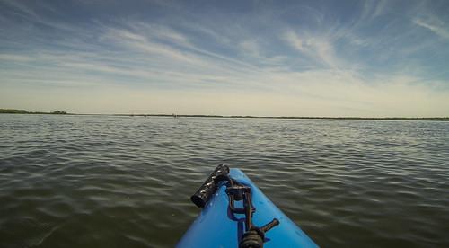 southcarolina kayaking paddling ghosttowns churchisland lakemarion lcu fergusonisland lowcountryunfiltered lakemarionghosttowntour
