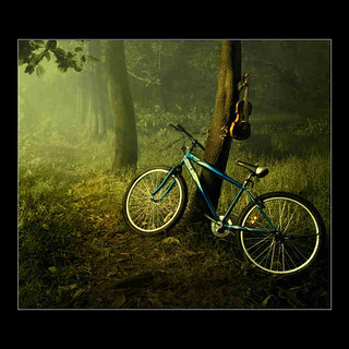 cycle wall paper with guitar forest(For More Information Click Below Link)
