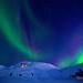 Aurora Borealis by Dibrova