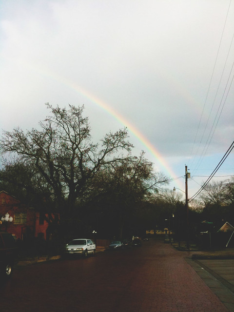 rainbow in tyler