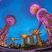 Gardens By The Bay & Marina Bay Sands Hotel, Singapore