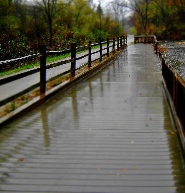 Rainy day fence friday-HFF!