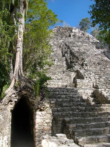 El árbol, la puerta y la pirámide
