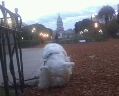 De paseo con la Mafi en esta linda tarde otoñal =)