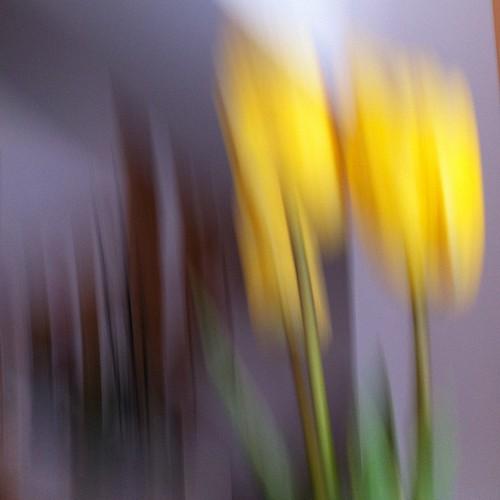 especial primavera by eMecHe