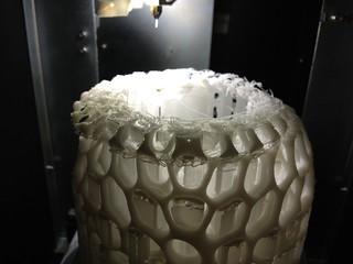 Cells Bowl