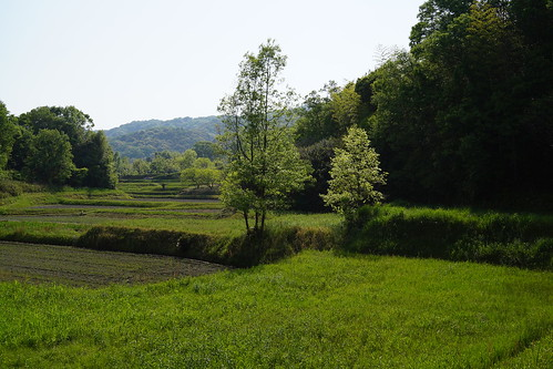 130506 矢田丘陵
