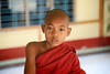 The young novice monk - Sagaing