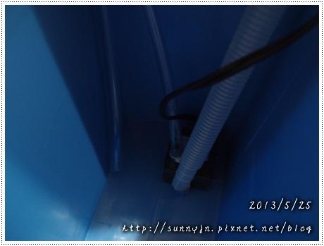 P5251416.jpg
