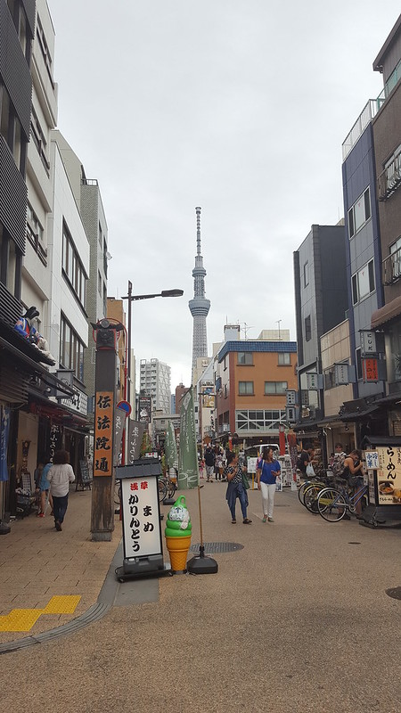 What to Do in Tokyo and Around