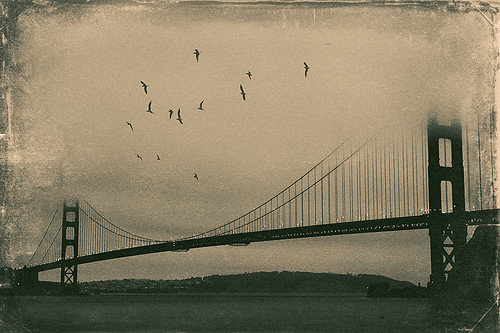 sanfrancisco california ca bridge sky usa texture water birds fog canon lights us unitedstates unitedstatesofamerica goldengatebridge ggb canon450d tamron1750mmf28xr canoneos450d canondigitalrebelxsi