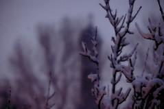 hiver 13